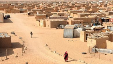 Photo of Sahrawi refugees in COVID-19 lockdown hit by livestock epidemic