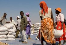 Photo of WFP :  ''271.8 MILLION IN THE WORLD ARE FOOD DEPRIVED''