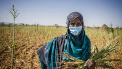 Photo of UNLOCK FUNDS AND UNBLOCK BOTTLENECKS TO BOOST FOOD SECURITY IN AFRICA