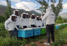 Photo of FARMERS WILL BE BEEKEEPING IN THE INSUFFICIENT AGRICULTURAL LANDS OF TAJIKISTAN