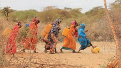 Photo of Millions of people in Somalia are facing death due to starvation